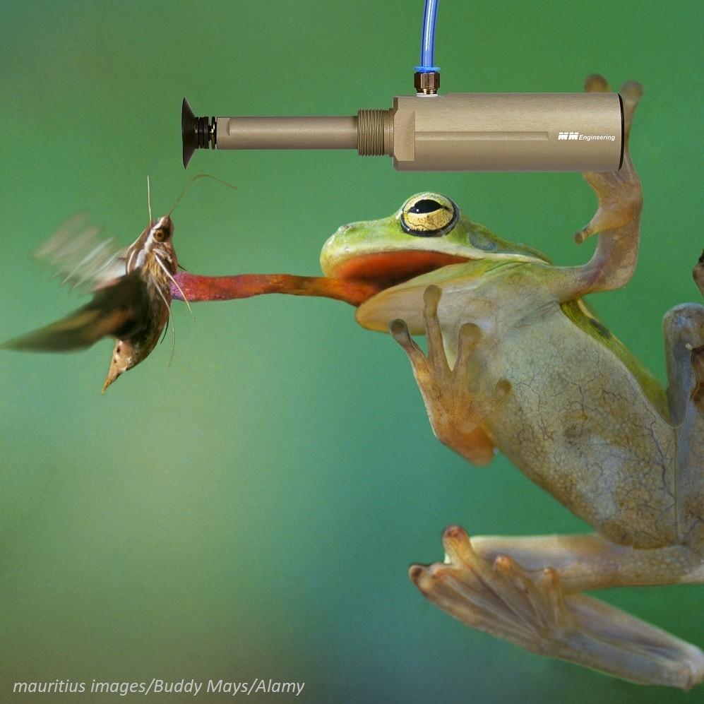 Hubsauger-flink wie Froschzunge